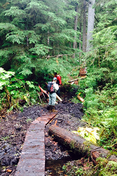 A photo of Angoon Tribe members working on a foot bridge