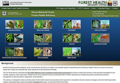 Using pest and tree photos, tables, and interactive maps, the Forest Health Advisory System provides vital information on future risks to forests across our nation. (U.S. Forest Service)