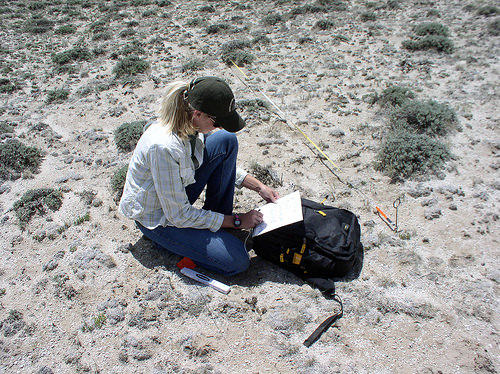 A photo of Mandi Hirsch, a member of the Sage-Grouse Initiative SWAT, conducts a field inventory.