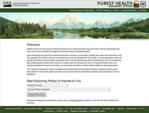 Through a simple web interface, you can start exploring forest health in places of interest to you such as national forests and national parks. (U.S. Forest Service)