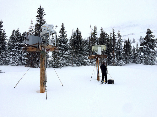 Apparatus for collecting precipitation samples, for analysis of atmospheric pollutants deposited in precipitation, located at West Glacier Lake in Montana. U.S. Forest Service photo.