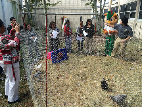 Green Ambassadors and Woodsy Owl facilitate tours of the sustainable initiatives of The Green Institute at Furr High School. (Photo Courtesy of the Houston East End Greenbelt)