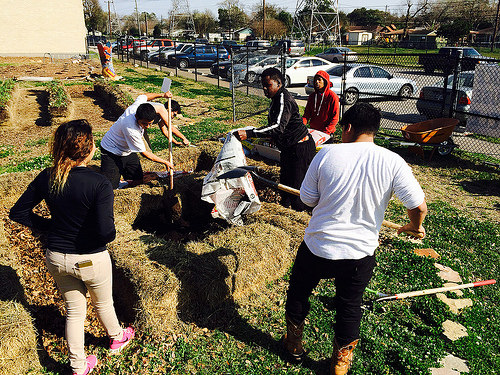 The Sustainable Agriculture Class at The Green Institute at Furr High School practices alternative methods of agriculture by using straw bales to grow organic vegetables. (Photo Courtesy of the Houston East End Greenbelt)
