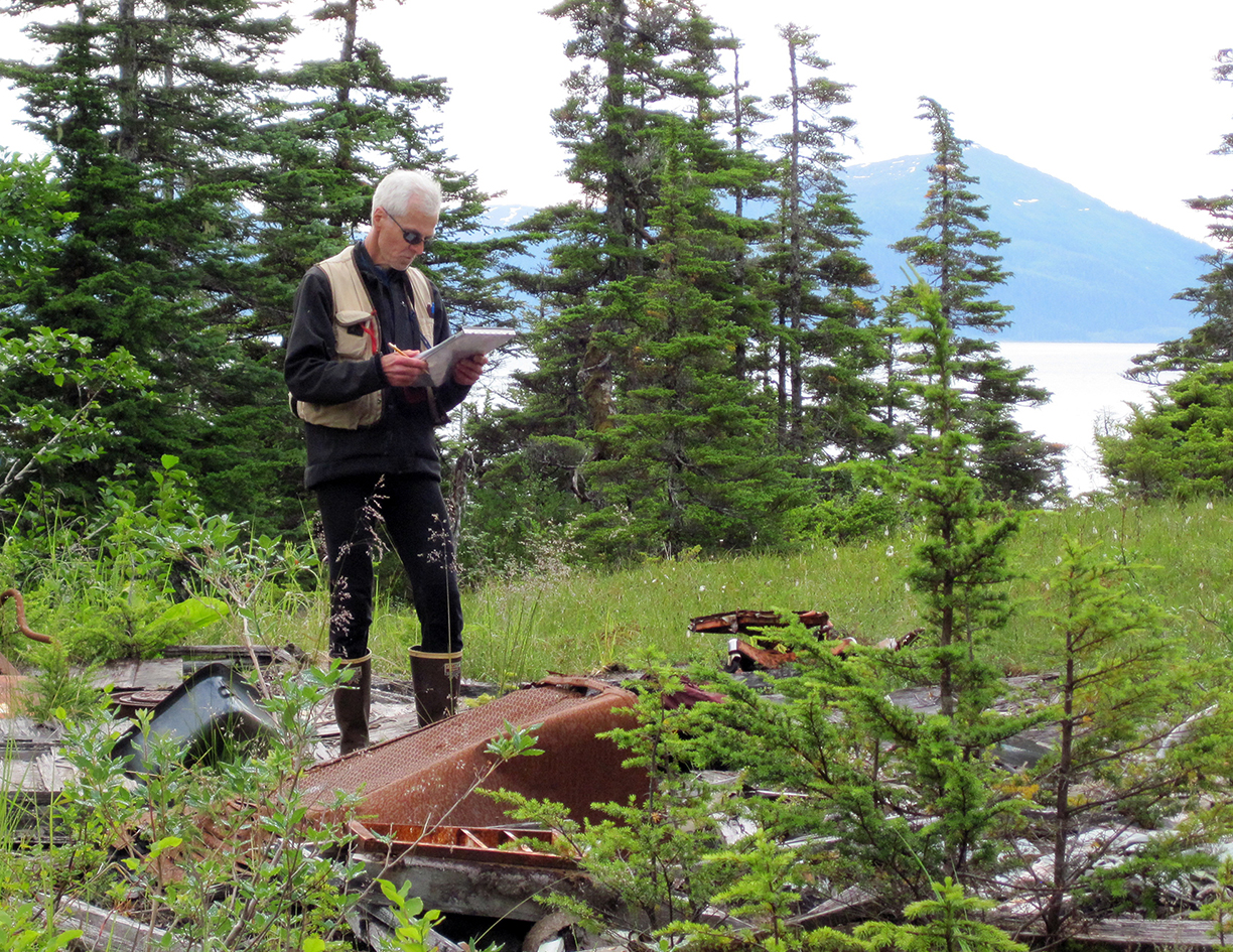 Robert L. DeVelice, a vegetation ecologist on the Chugach National Forest, monitors invasive plants. (Forest Service photo)