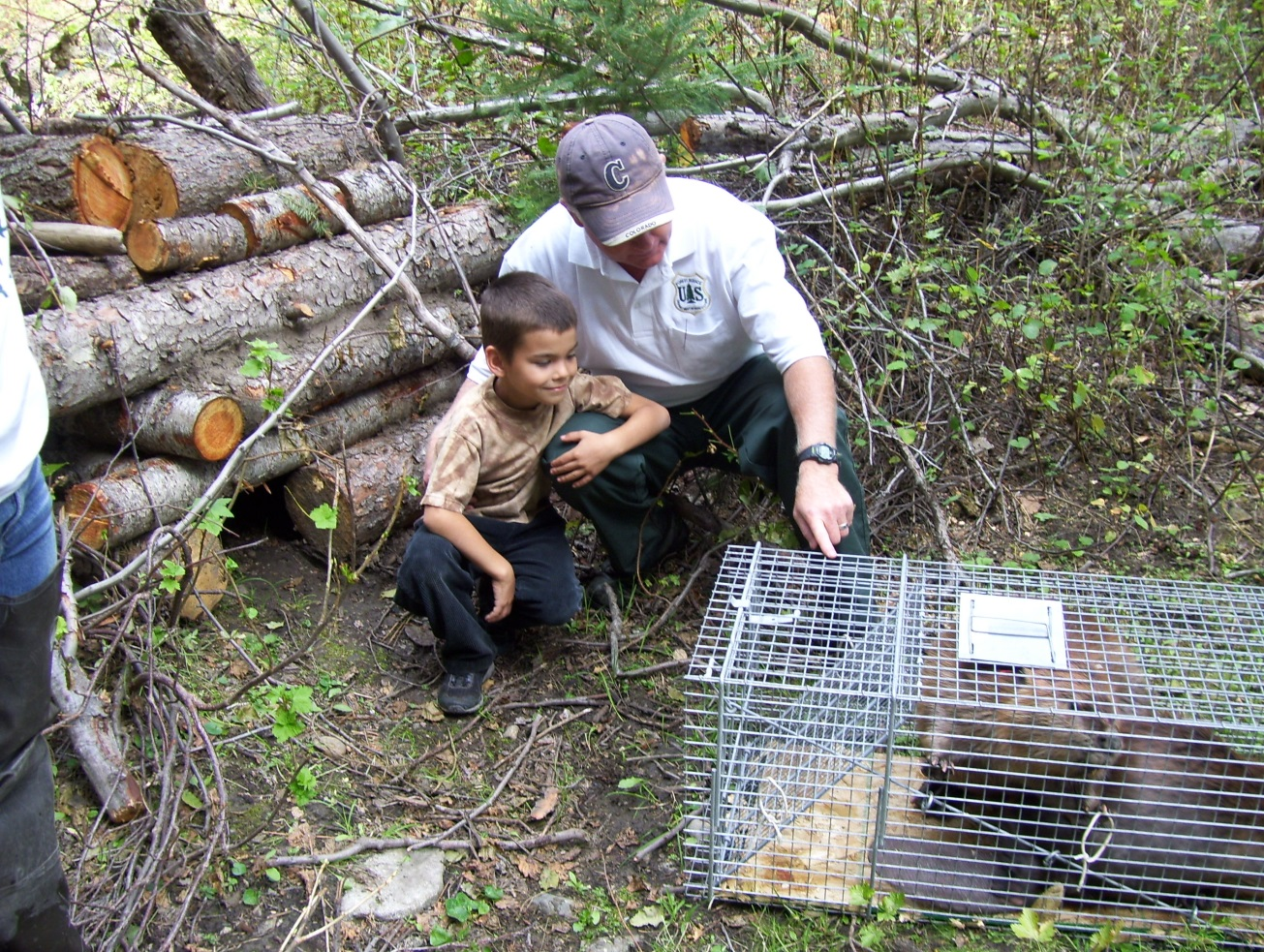 Kent Woodruff, U.S. Forest Service biologist, introduces a local resident named David to a soon-to-be-new-resident beaver as part of one of the project's education programs. (USFS Photo)