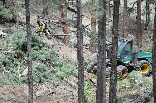 In July/August 2013 the Forest Service and City of Flagstaff, Arizona conducted a pilot project off FR240 (Schultz Pass Road).
