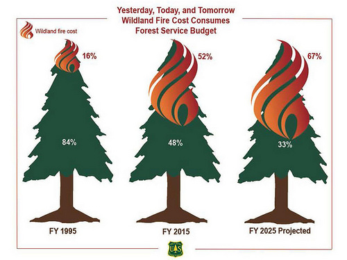 Yesterday, Today and Tomorrow: Wildland Fire Cost Consumes Forest Service Budget