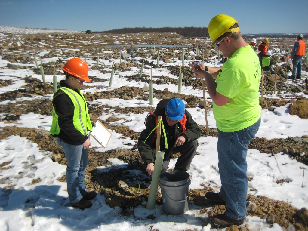 Forestry students from Glenville State College and other volunteers planting trees on reclaimed mined land in West Virginia. (U.S. Forest Service photo by Mary Beth Adams)