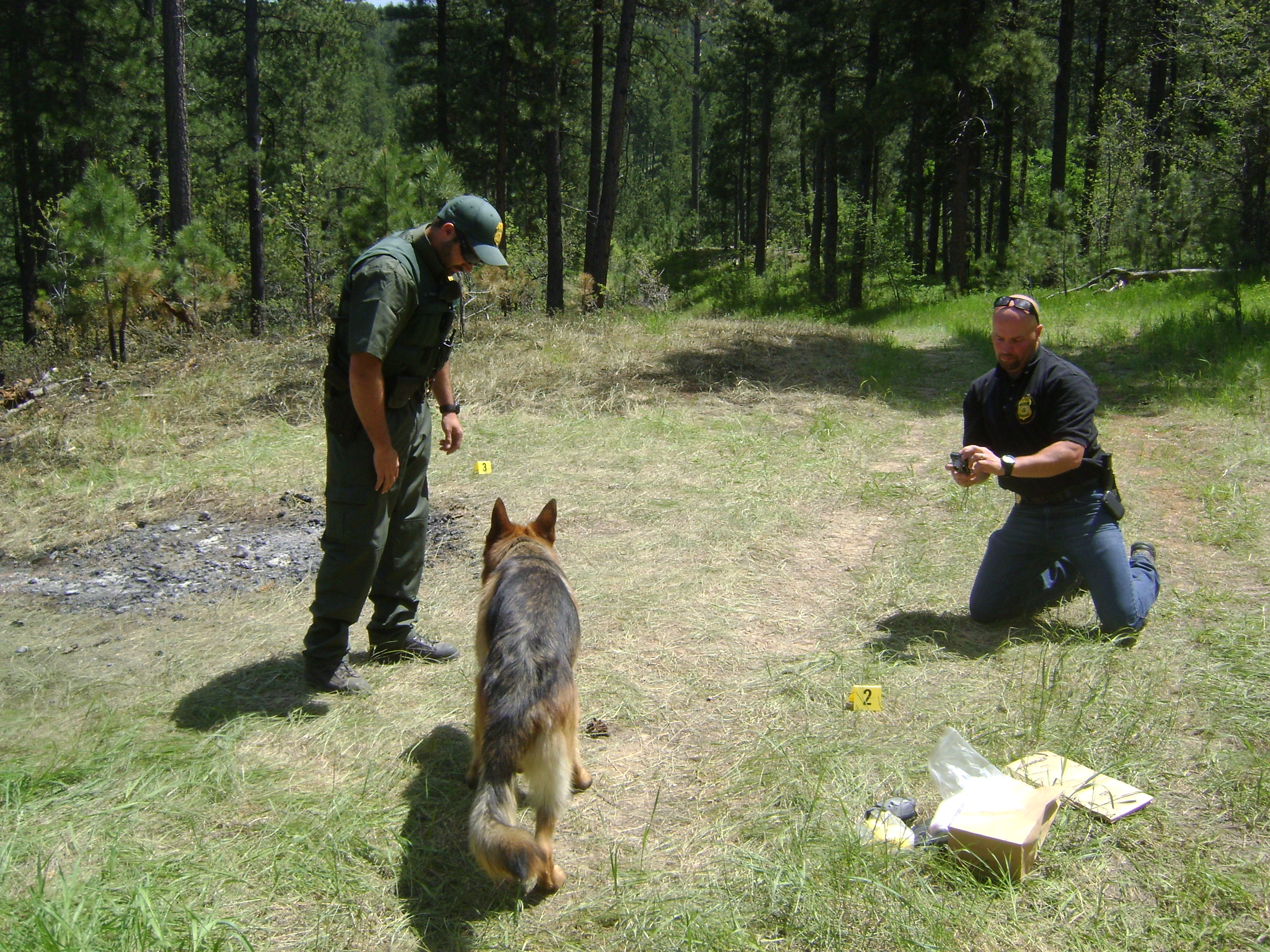 Special Agent Travis Lunders (right), working on a national forest. (U.S. Forest Service photo)