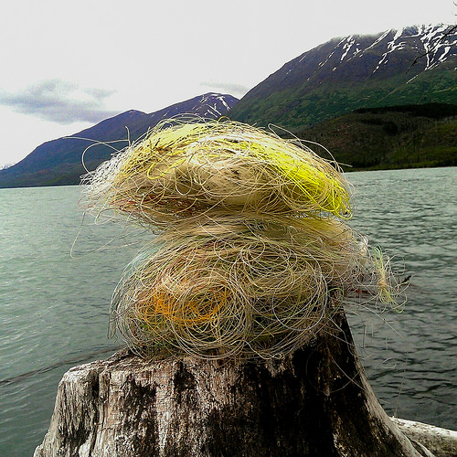 A photo of collected broken fishing line.