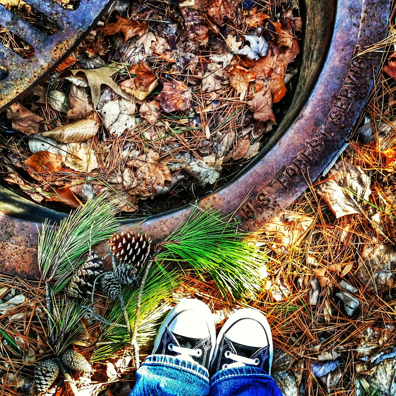 A picture looking down at a pair of shoes amongst pine needles, pinecones and leaves.