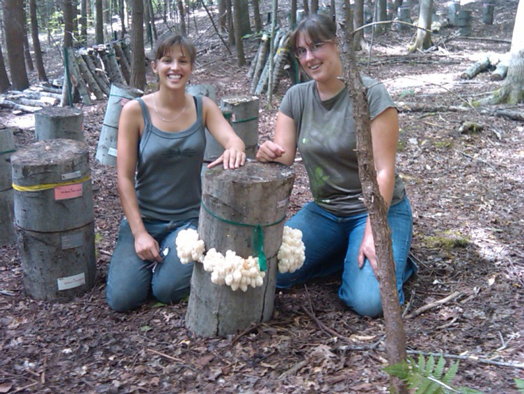 A photo of two Workshop participants examine forest grown lion's mane mushrooms.