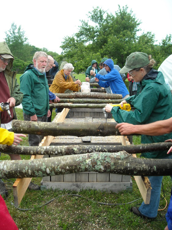 A photo of Workshop participants inoculate logs for forest grown shiitake mushroom production.
