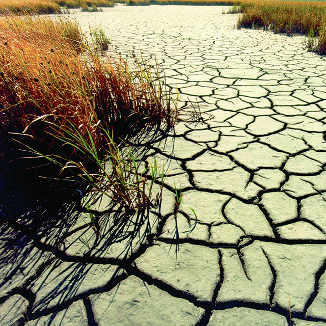 A photo of the obvious effects of drought can be seen in dry, cracked mud.