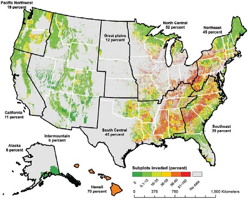 Researchers mapped the invasion-intensity for FIA sample sites and then estimated invasion-intensity for U.S. regions.