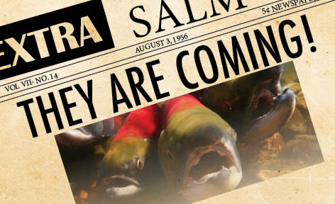 "An illustration of a newspaper with salmon on the front page, headline ""They are coming\"""