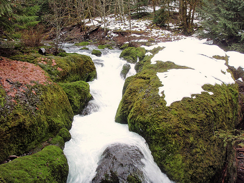 Flows like this now mimic a natural river system throughout the  seasons of the year. This water release expands habitat for fis