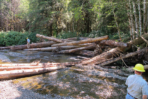 Forest Service employees Don Martin and John Lane inspect an in-stream restoration structure on 12-mile Creek.