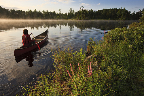 A man canoeing on Little Bear Brook Pond. Coos County, NH.