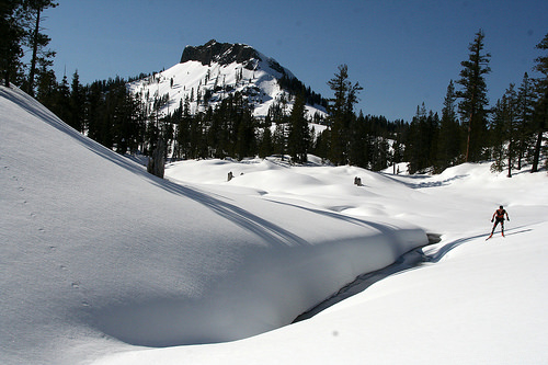 A cross-country skier enjoys a sunny day at Royal Gorge Cross Country Ski Report on Donner Summit near Lake Tahoe, CA.
