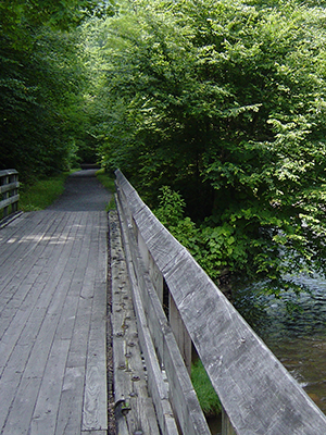 A wood bridge over a river.