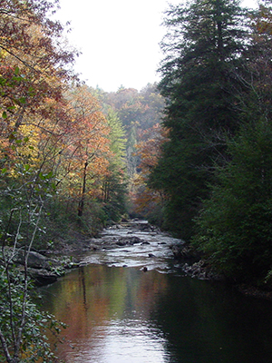 A river surrounded by fall foliage; trees covered with orange, yellow and brown colored leaves.
