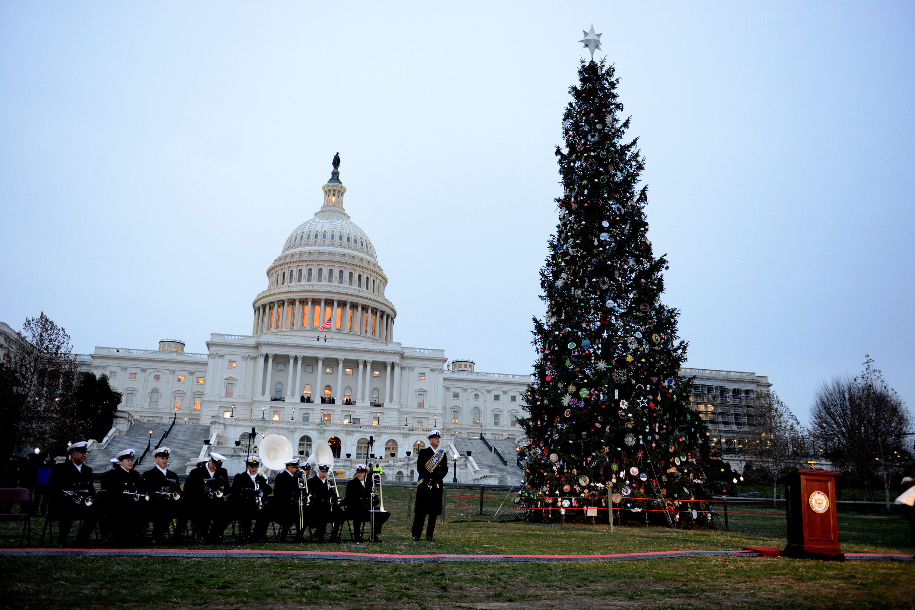 Capitol Christmas Tree.2018 Capitol Christmas Tree A Field Perspective Us Forest