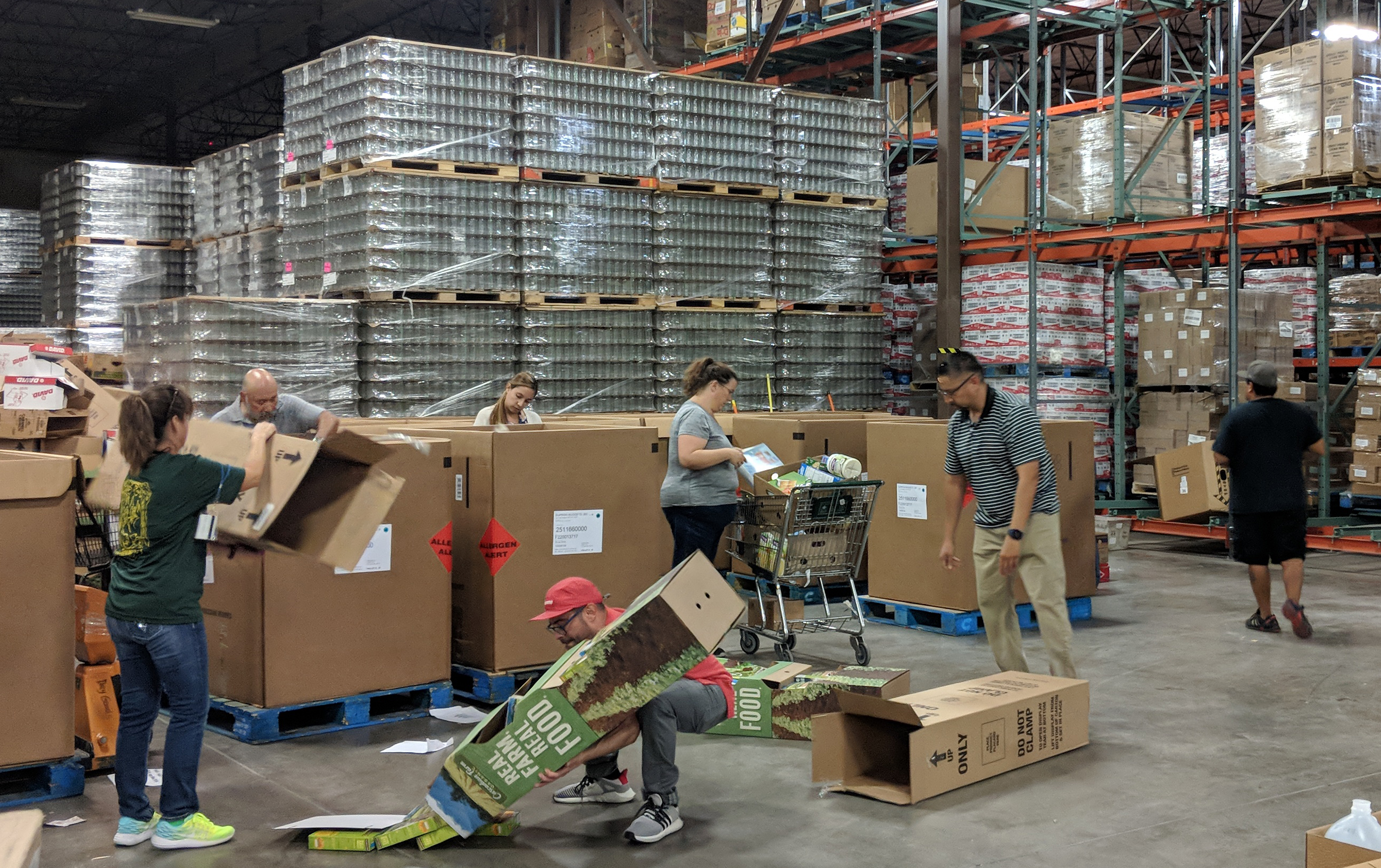 Employees sort through food donations to prepare them for distribution.