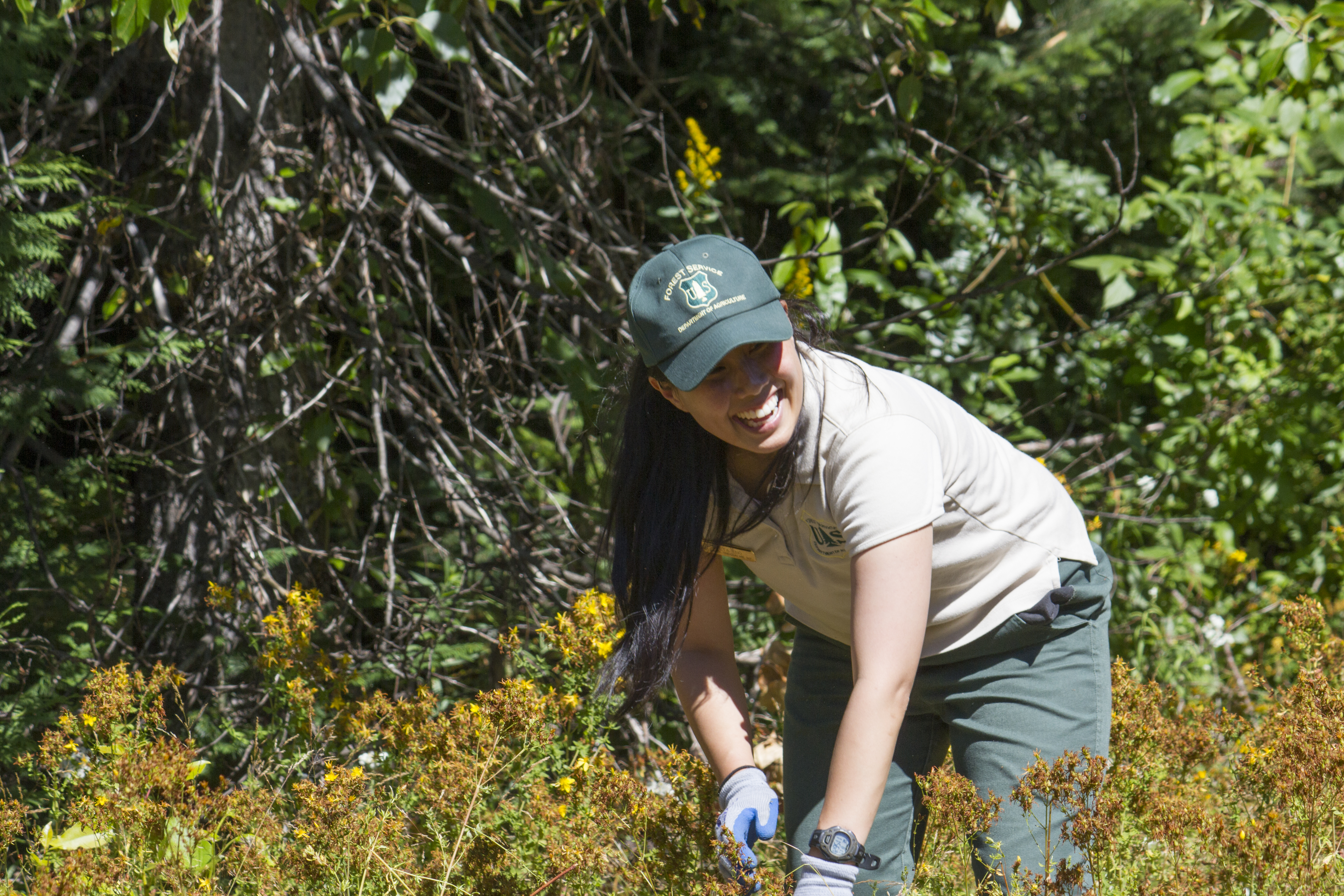 Forest Service Careers | US Forest Service