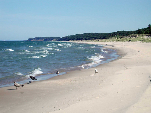 The picturesque shoreline of Lake Michigan. Photo credit: US Forest Service