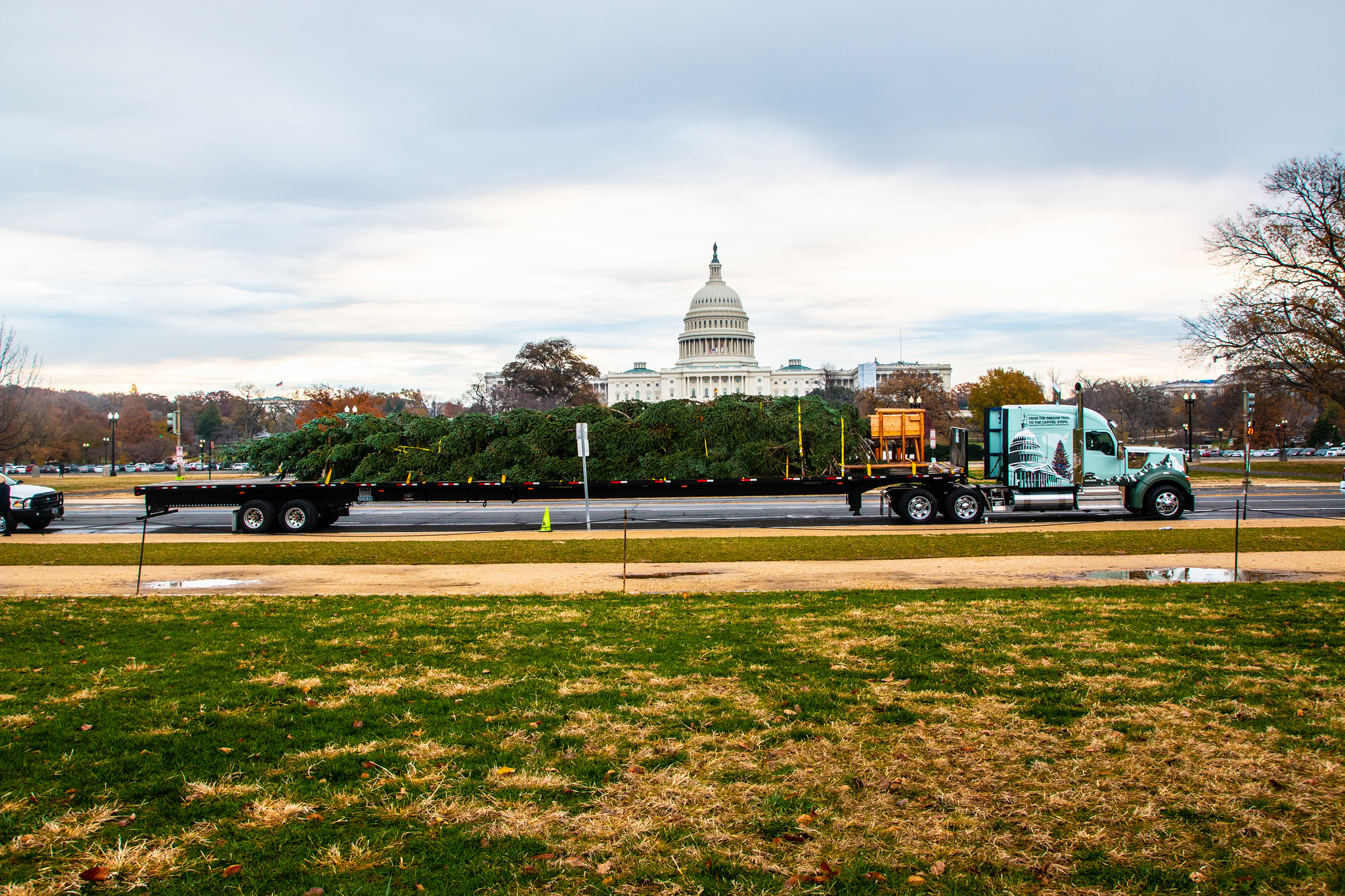 Photo: Flat-bed truck delivering the 2018 Capitol Christmas Tree. US Capitol seen in the background. Daylight