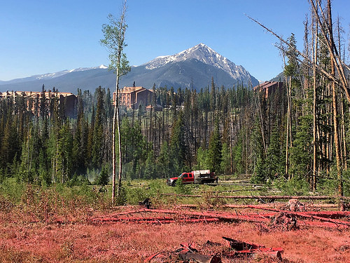 A picture of fire retardant (pink in color, and in the foreground).  Structures and the Rocky Mountains are in the background.
