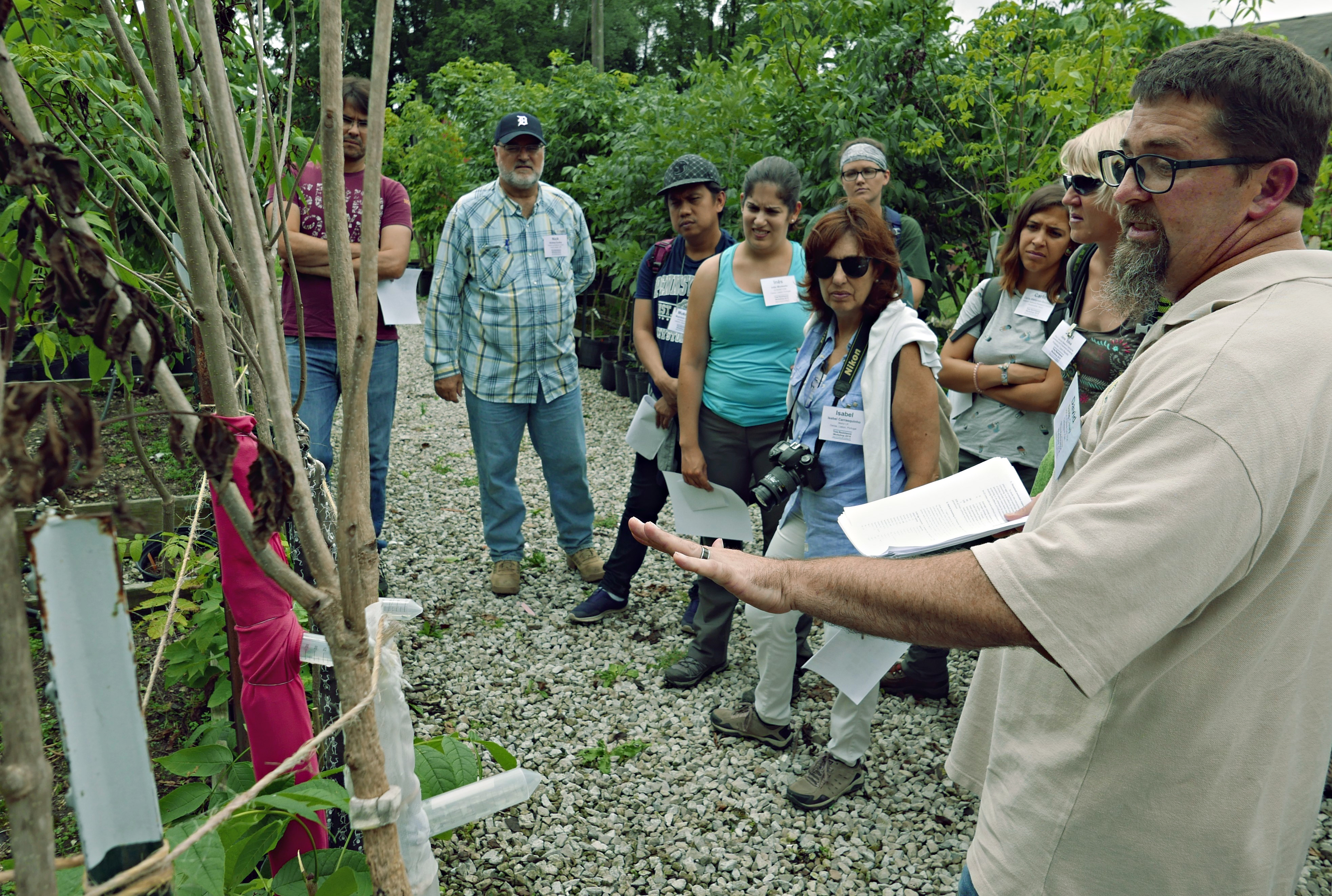David Carey and workshop participants stand in tree breeding area.