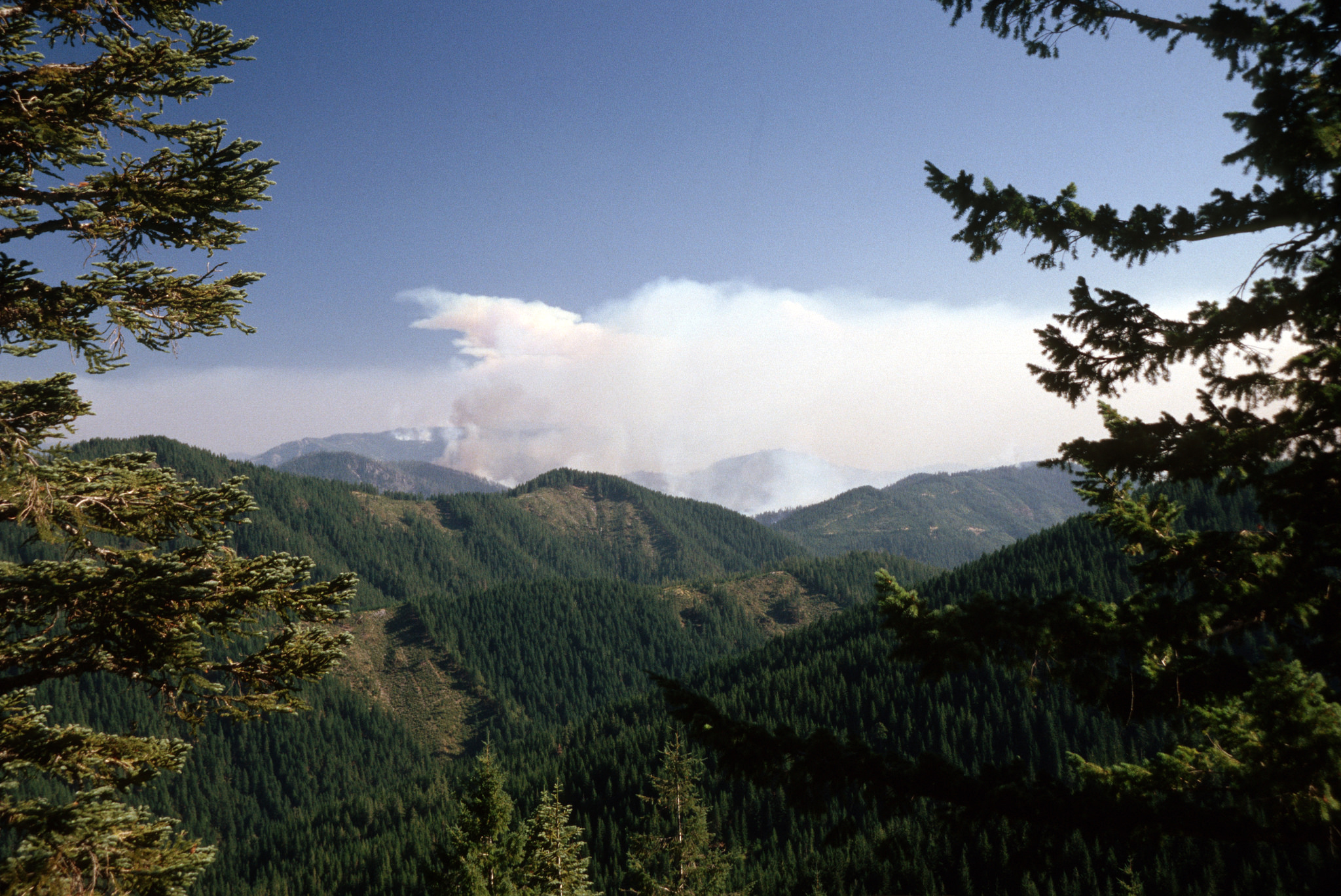 A plume of smoke over distant hills on Rogue River-Siskiyou National Forest.