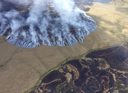 A photo of The Bogus Creek Fire burns in the Yukon Delta National Wildlife Refuge