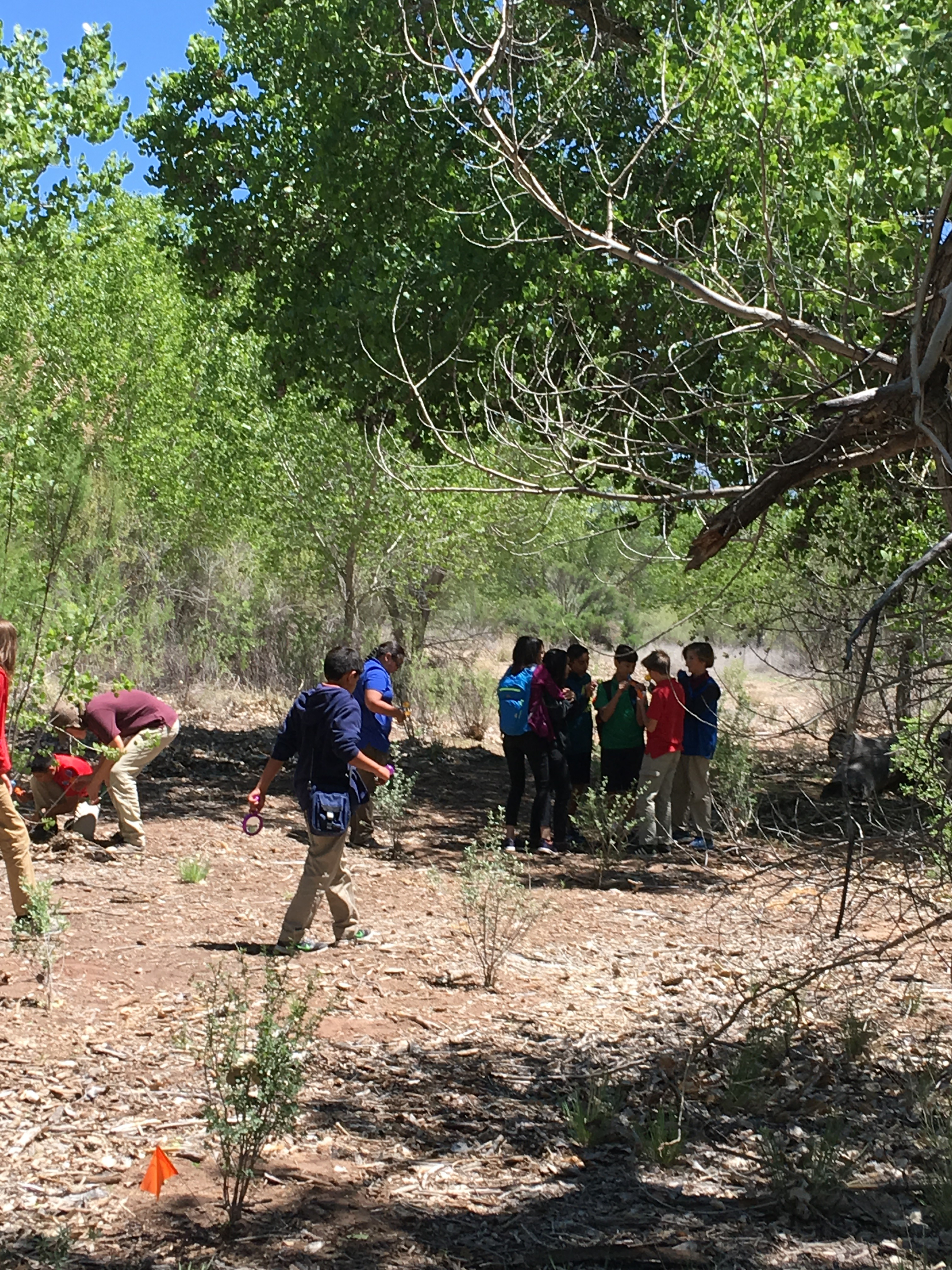 Area children collect samples and learn about the natural world within the Rio Grande Bosque.