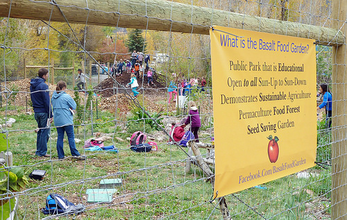 A photo of Children playing at the demonstration food forest and connect with nature