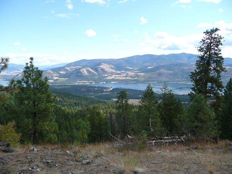 A photo of Colville National Forest