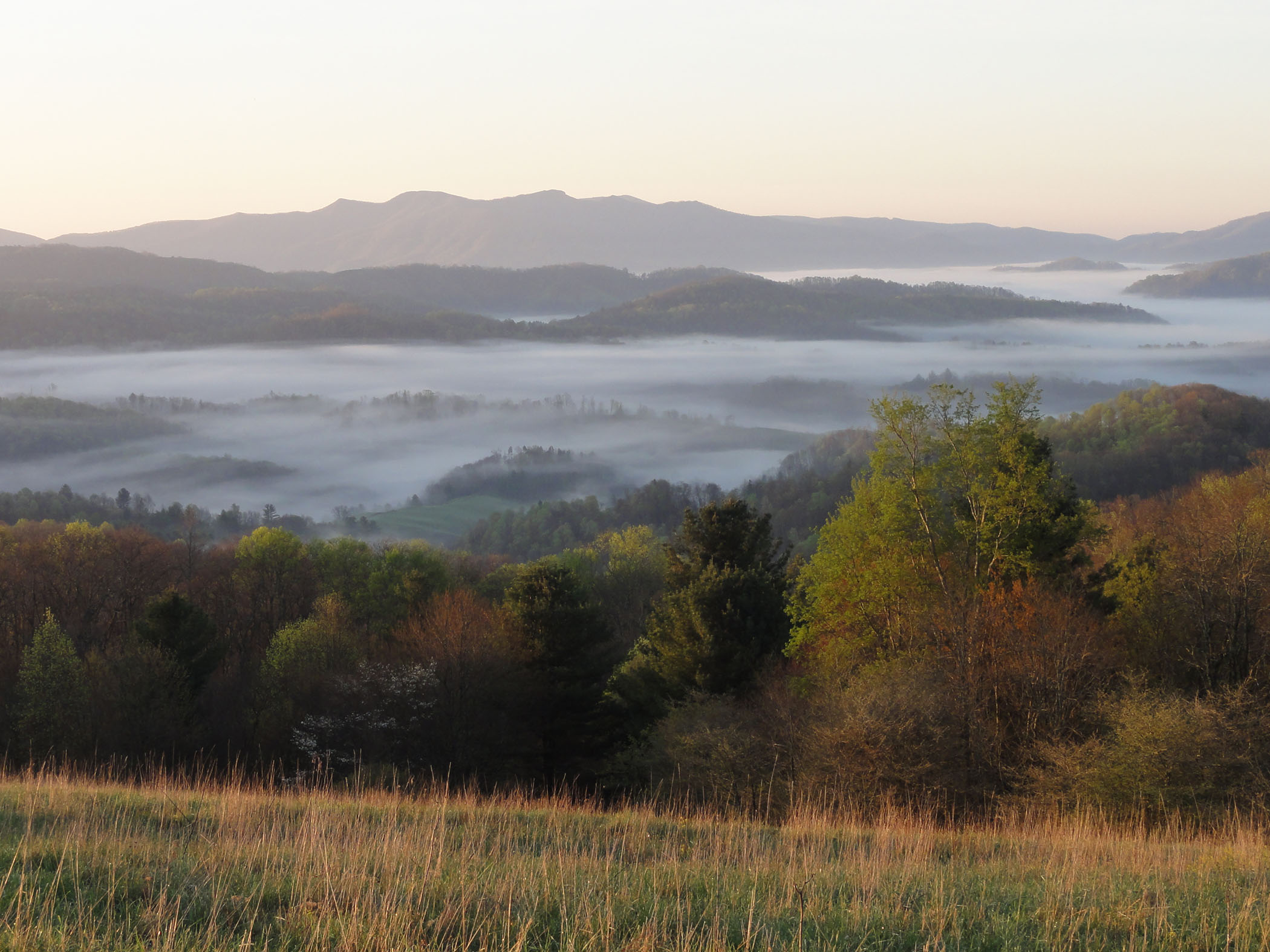 Photo: Overlooking Cut Laurel Gap from hilltop. Forests are changing to fall colors. A heavy mist hangs over the valley.
