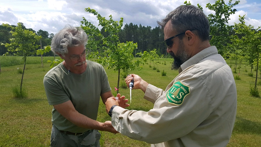 Photo: Two men, one in uniform, stand in field of young trees. One holds large syringe.