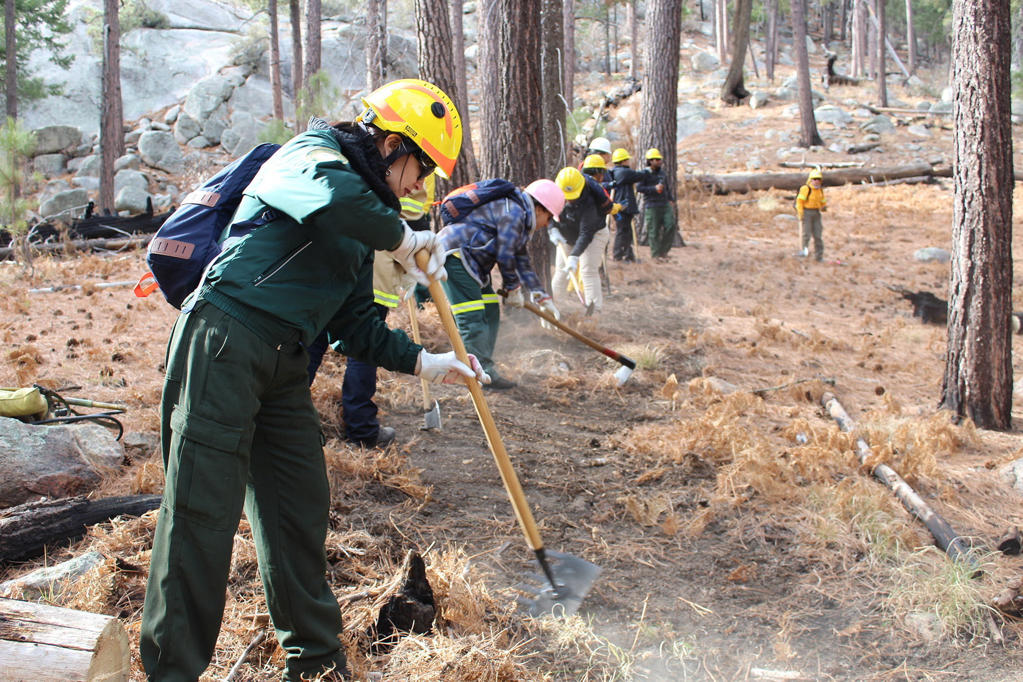 Photo: Women in safety gear use McLeod tool, Pulaski axe and other tools to clear brush and simulate building a fire line in forest.