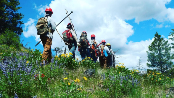 A photo of trail workers walking through a field of wild flowers