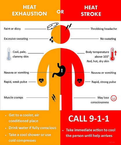 Heat exhaustion or heat stroke graphic
