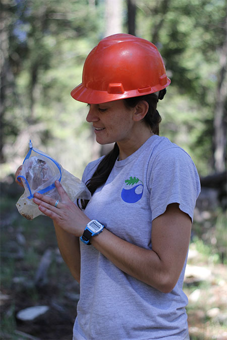A photo of Serra Hoagland holding a live deer mouse in the mixed conifer forests of New Mexico on the Mescalero Apache Indian Reservation