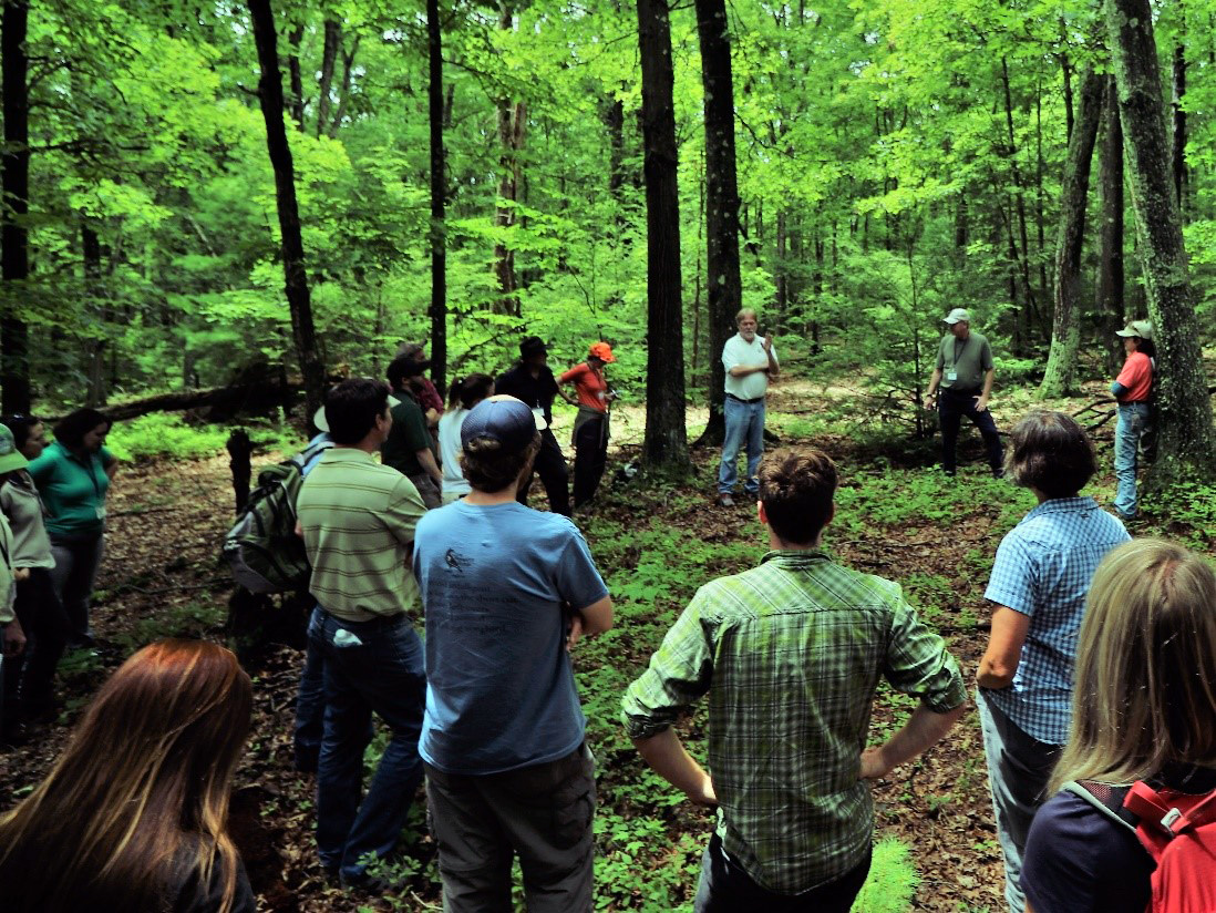 Photo: Group of people in hemlock forest.