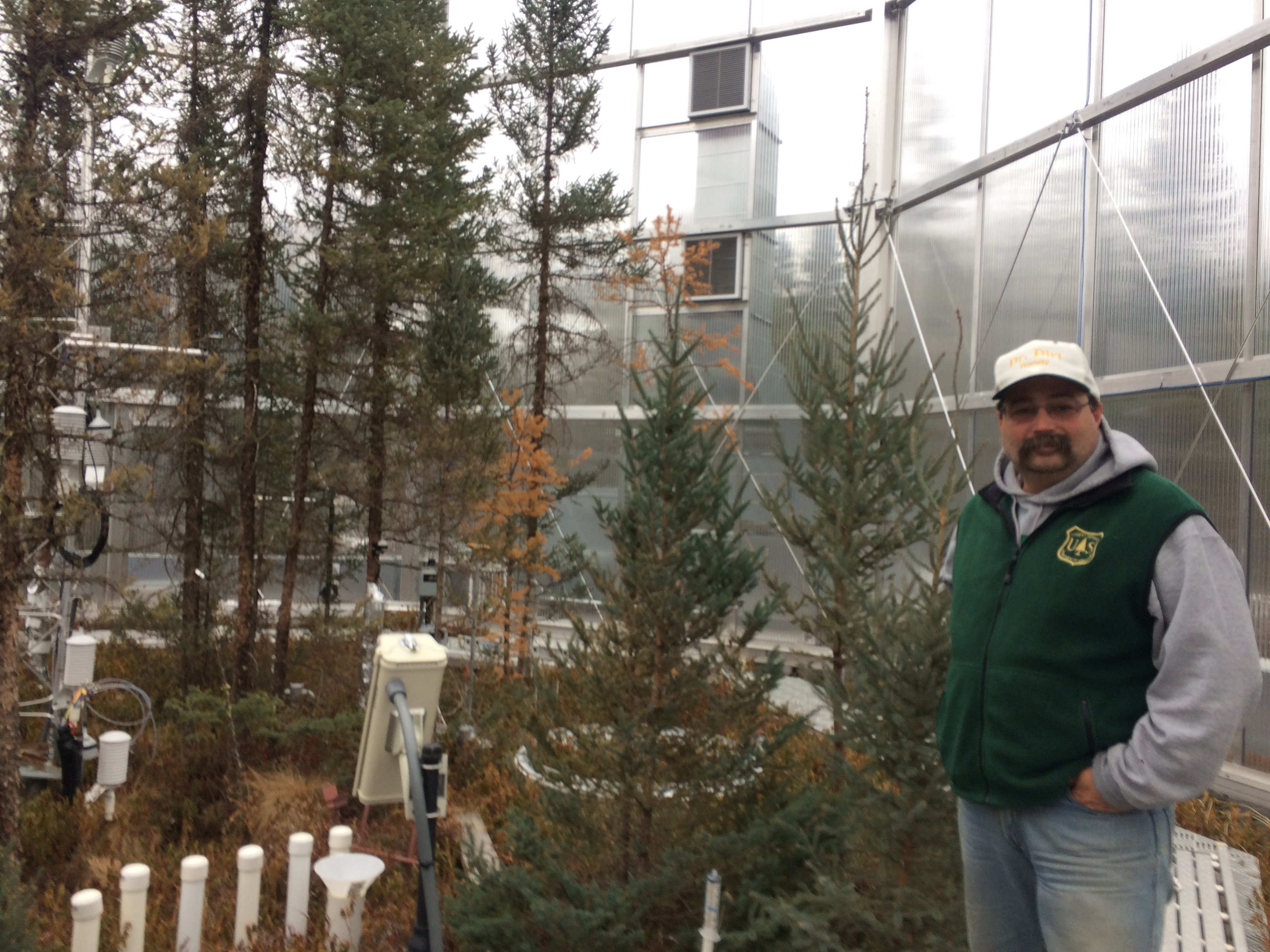 Forest Service research soil scientist Randy Kolka inside one of the SPRUCE testing chambers