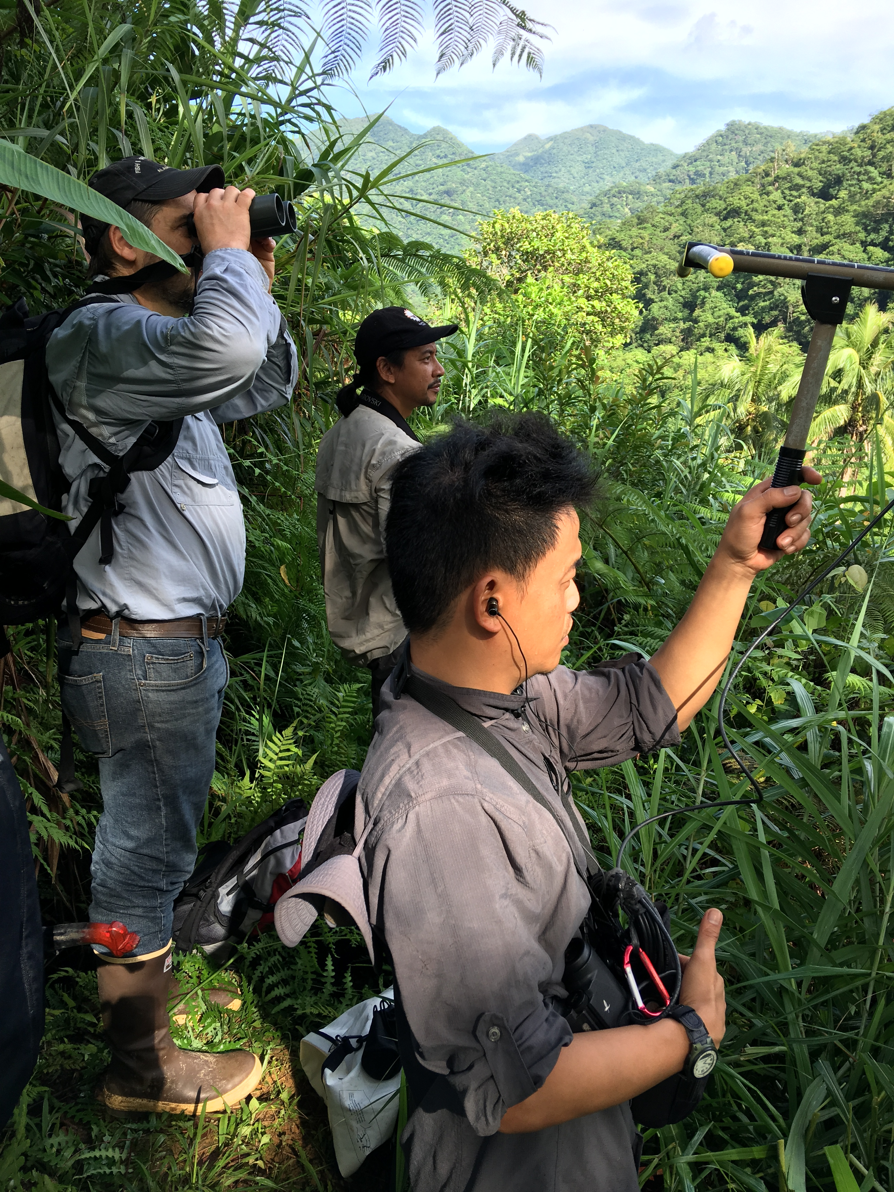 Forest Service and Philippines Eagle Foundation partners track a tagged eagle in Apayao province