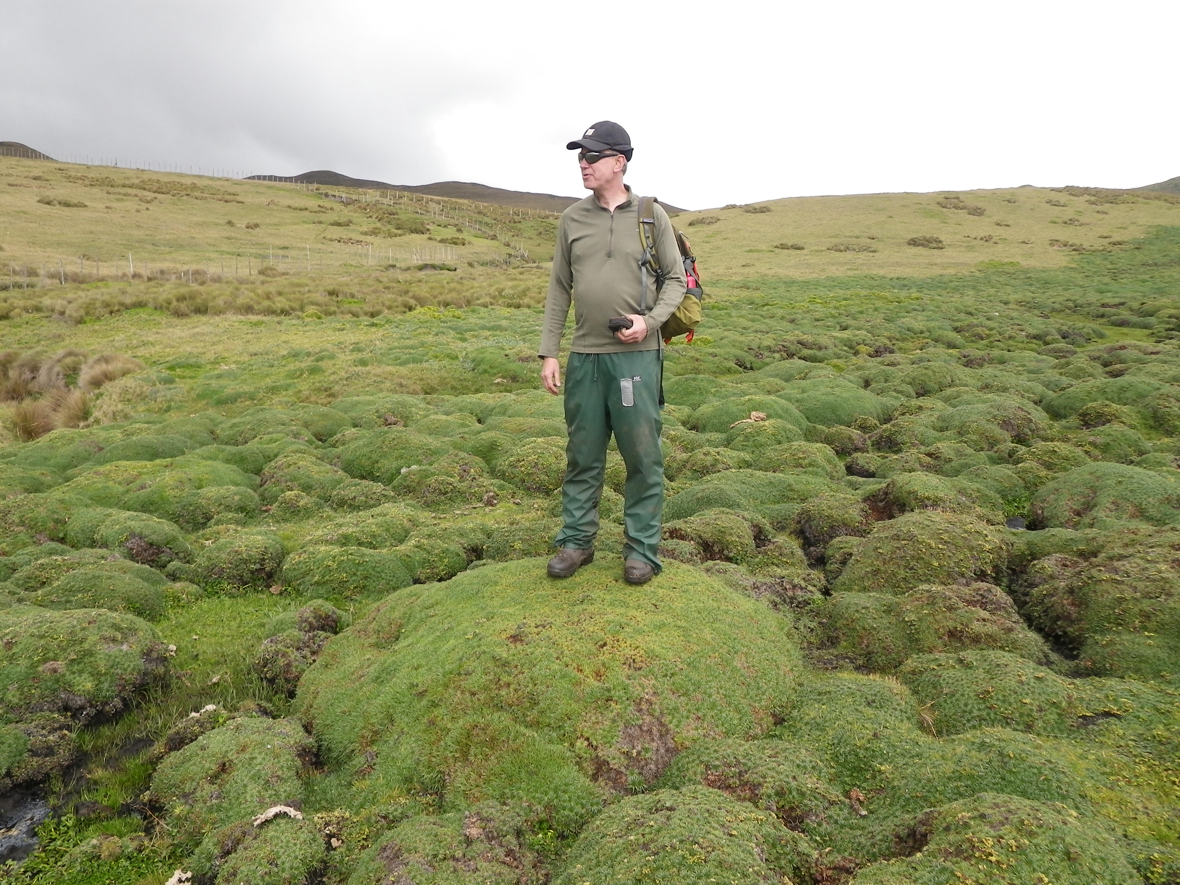 Forest Service Employee Stands on Peatland