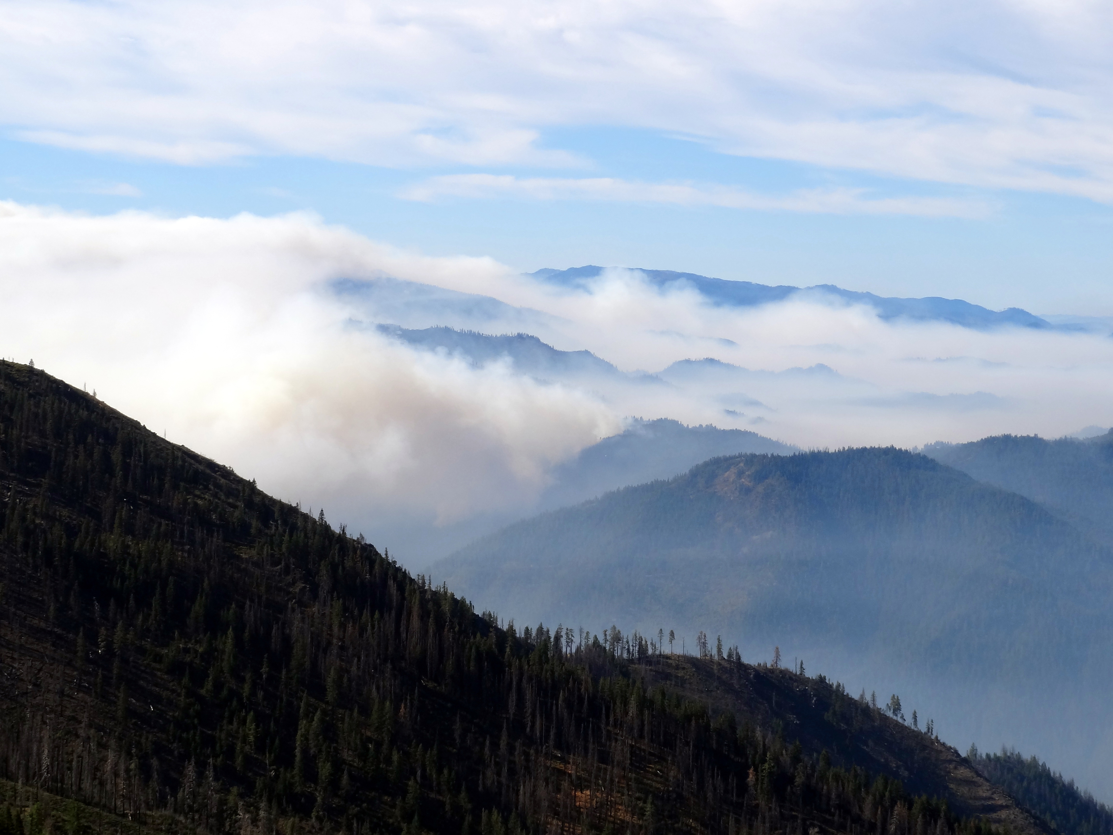 Smoke billows through the air over forested valley.