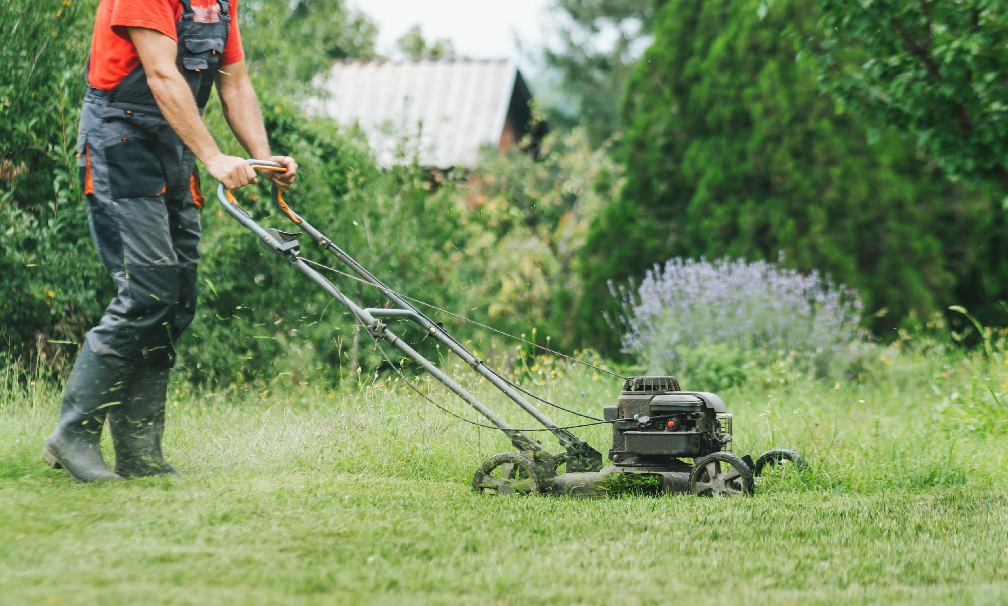 Although clear markers showed where home property lines began and ended, this never stopped my neighbor's weeds from creeping into my yard. Now we share the cost and labor of yard care for both lawns, with great results.